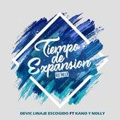 Tiempo de Expansión (Remix) by Devic Linaje Escogido
