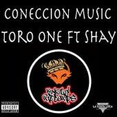 Coneccion Music by Toro One