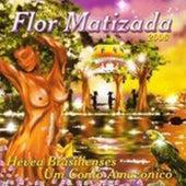 Hévia Brasilienses. Um Conto Amazônico de Ciranda Flor Matizada