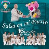 Salsa En Mi Puerto: 16VA Edición (En Vivo) by Orquesta Zaperoko de