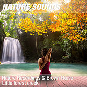 Nature Recordings & Brown Noise - Little forest creek by Nature Sounds (1)
