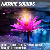 Nature Recordings & Brown Noise - Beautiful aqua noise by Nature Sounds (1)