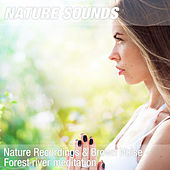 Nature Recordings & Brown Noise - Forest river meditation by Nature Sounds (1)