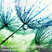 Nature Recordings & Brown Noise - Calming rain and wind by Nature Sounds (1)