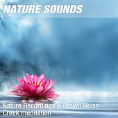 Nature Recordings & Brown Noise - Creek meditation by Nature Sounds (1)