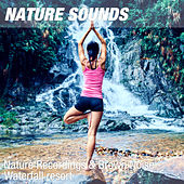 Nature Recordings & Brown Noise - Waterfall resort by Nature Sounds (1)