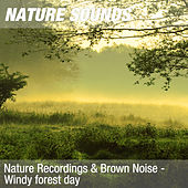 Nature Recordings & Brown Noise - Windy forest day by Nature Sounds (1)