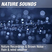 Nature Recordings & Brown Noise - Rain & wind weather by Nature Sounds (1)