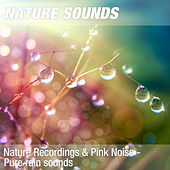Nature Recordings & Pink Noise - Pure rain sounds by Nature Sounds (1)