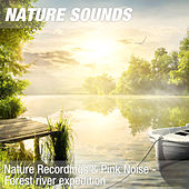 Nature Recordings & Pink Noise - Forest river expedition by Nature Sounds (1)