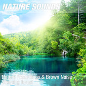 Nature Recordings & Brown Noise - Sleeping forest by Nature Sounds (1)