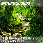 Nature Recordings & Pink Noise - Running water stream by Nature Sounds (1)