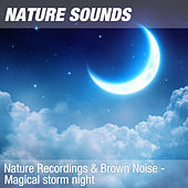 Nature Recordings & Brown Noise - Magical storm night by Nature Sounds (1)