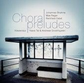 Brahms, Febel, Reger: Choralpreludes by Various Artists
