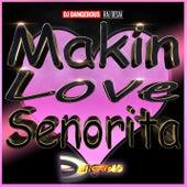 Makin Love Senorita de DJ Dangerous Raj Desai