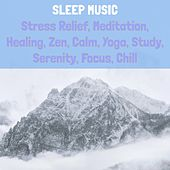 Sleep Music: Stress Relief, Meditation, Healing, Zen, Calm, Yoga, Study, Serenity, Focus, Chill de Various Artists