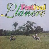 Festival Llanero van German Garcia