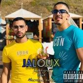 Jaloux by Le Tigre