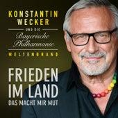 Frieden im Land - Das macht mir Mut di Konstantin Wecker