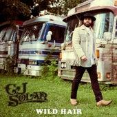 Wild Hair by CJ Solar