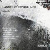 Hannes Kerschbaumer: Schraffur by Various Artists