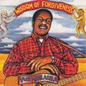Wisdom Of Forgiveness de Vusi Mahlasela