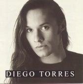 Diego Torres de Diego Torres