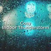 Cosy Indoor Thunderstorm de Thunderstorm Sound Bank
