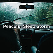 Peaceful Sleep Storm de Thunderstorm Sound Bank
