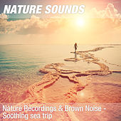 Nature Recordings & Brown Noise - Soothing sea trip by Nature Sounds (1)