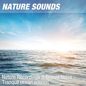 Nature Recordings & Brown Noise - Tranquil ocean sounds by Nature Sounds (1)