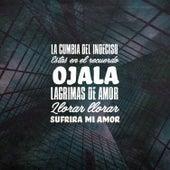 La Cumbia del Indeciso / Estas en el Recuerdo / Ojala / Lagrimas de Amor / Llorar Llorar / Sufrira Mi Amor de German Garcia