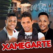 Xamegarte 2019 de Xamegarte