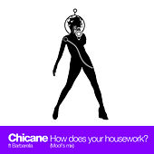 How Does Your Housework? (Moof's Mix) by Chicane