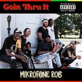Goin Thru It by Mikrofone Rob