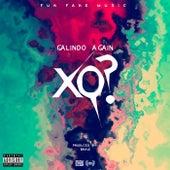 Xq? by Galindo Again