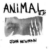 A.N.i.M.A.L de John Newman