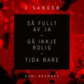 3 Sanger von Kari Bremnes