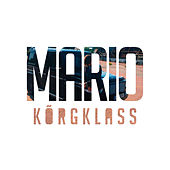 Kõrgklass (radio edit) by Mario
