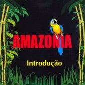 Introdução von Amazonia