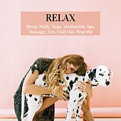 Relax: Sleep, Study, Yoga, Meditation, Spa, Massage, Zen, Chill Out, Peaceful by Various Artists