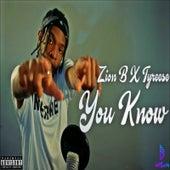 You Know von Zion B