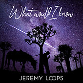 What Would I Know de Jeremy Loops