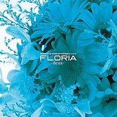 Common Ground Recordings Presents Floria-Duex- by Various Artists