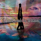 70 Natural Sounds for Meditation by Yoga Music