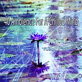 40 Ambience for a Chilled Mind von Music For Meditation