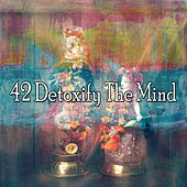 42 Detoxify the Mind by Yoga Music