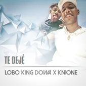 Te Deje de Lobo King Dowa