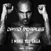 I Make You Gaga by David Morales