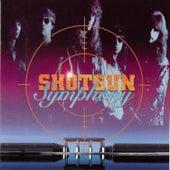Shotgun Symphony by Shotgun Symphony